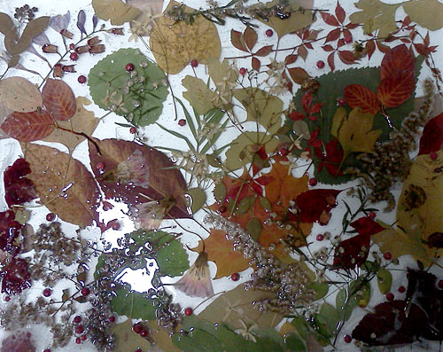 Plant Art Painting