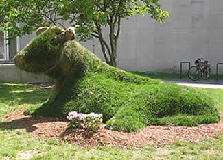 Living Sculpture Website
