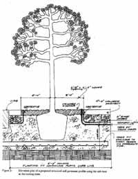 Urban Horticulture Institute Horticulture Section
